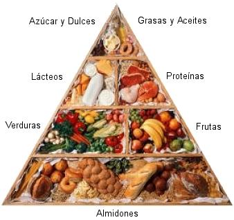 Bases de una buena alimentación