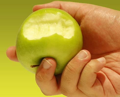 Todo sobre las manzanas