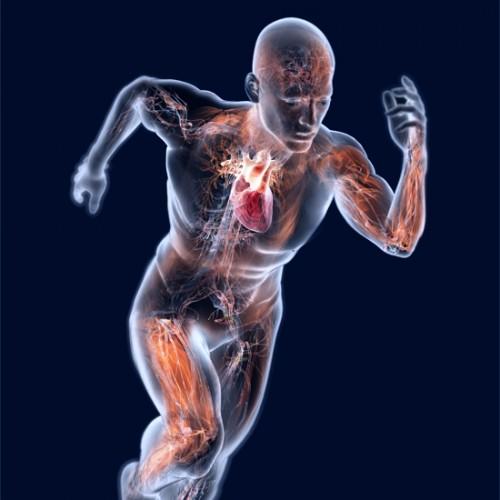 Evoluciona: Running