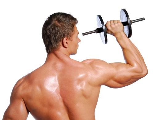 5 Factores para aumentar la masa muscular