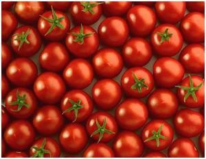 tomate acido urico colesterol