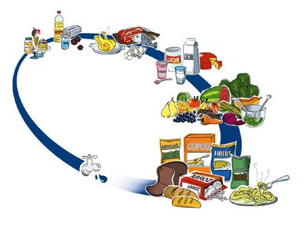 Macronutrientes y Micronutrientes: ¿Qué son?