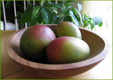 La milagrosa dieta del Mango Africano