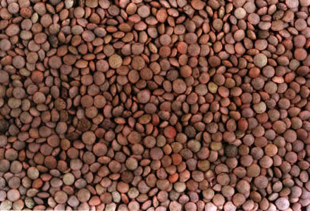 Alimentos ricos en hierro: ¿por qué son tan importantes?