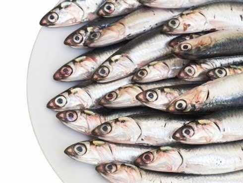 Nutrientes del pescado: ¿Cuales son?