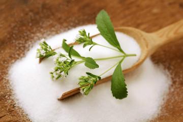 ¿Qué es la Stevia? Endulza tus recetas de manera natural