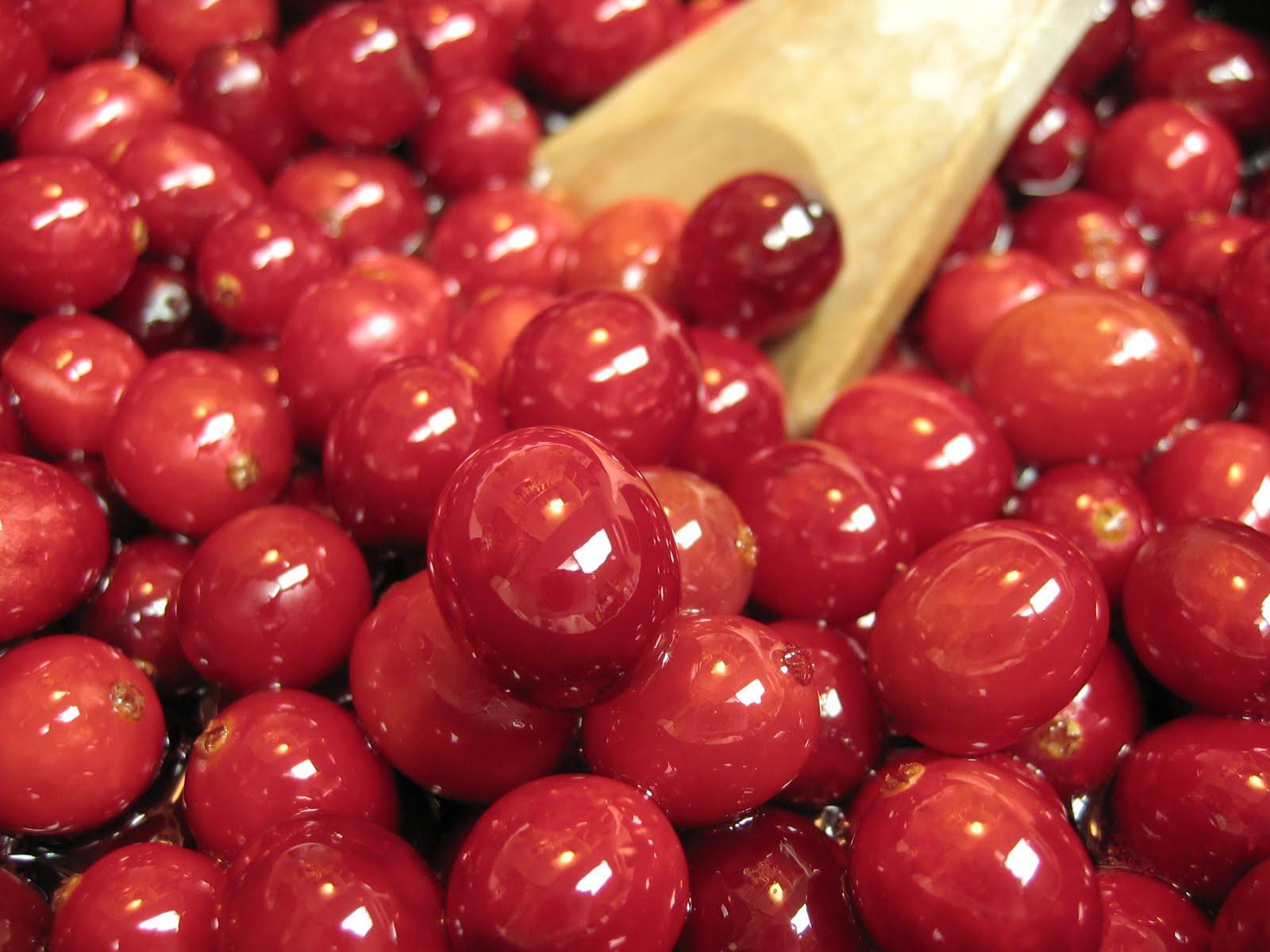 Alimentos Sanos: Arándanos rojos contra la cistitis