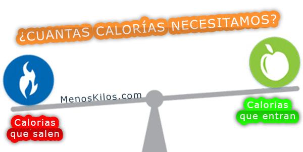 Cuantas calorías necesitamos al día